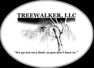 Treewalker LLC